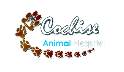 Cochise Animal Hospital logo